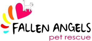 Fallen Angels Logo