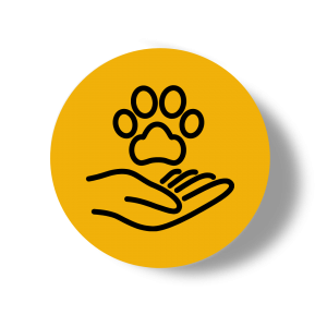 Hand and paw print