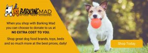 barking mad pet products shop now banner