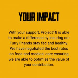 how you can make a difference by donating to project18