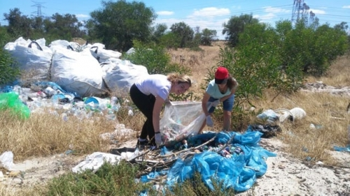 Teams Cleaning up Rubbish.